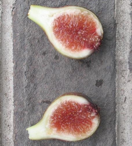 Vista breba fruit