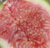 emerald-strawberry-143-36