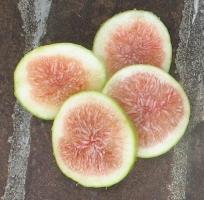 emerald-strawberry-17