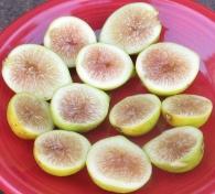 lemon-blanche-4