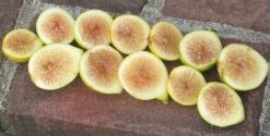 lemon-blanche-9