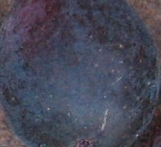 lsu-purple-skin-2