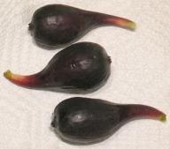 Petite Negri breba (4)