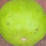 lattarula-skin-5