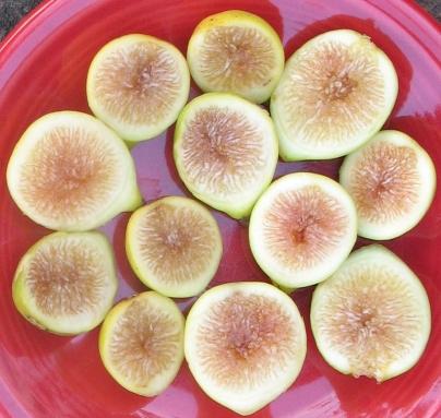 lemon-blanche-5
