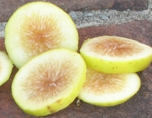 lemon-blanche