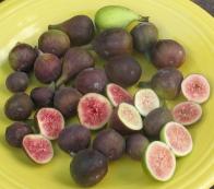 27-figs-mt-etna-brooklyn-white-lsu-purple-black-madeira-5