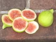 emerald-strawberry-12