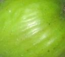 calverte-skin