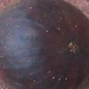 Black Madeira (Figo Preto)