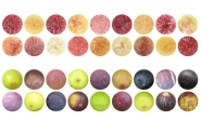 fig-pulp-and-skin-diversity