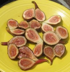 O'Rourke breba figs (990x1024)