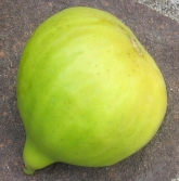 San Miro Piro breba (17)