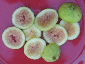 Garnsey White Seedless new (2)