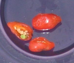 Goji Berries Mountain Figs